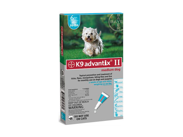 advantix640 Kill Fleas The Advantix Way